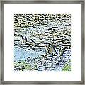 Swallows At The River Framed Print