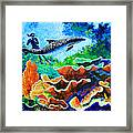Swimming With The Dolphins Framed Print