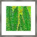 Sword Fern Fossil-green Framed Print