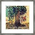 Symbolically Solid Tree Framed Print by Paulo Zerbato