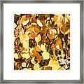 Taos Gold Iv Framed Print