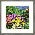 The Beauty Of Fall Bofwc Framed Print