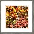The Blaze Of Autumn Framed Print