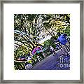 The Bubble Man Of Central Park Framed Print
