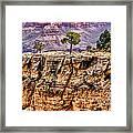 The Grand Canyon Iv Framed Print