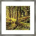 The Hall Of Mosses Framed Print