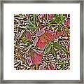 The Lenten Rose Framed Print