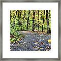 The Mount Vernon Trail. Framed Print