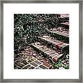 The Old Steps Framed Print