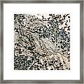 The Trace. Framed Print