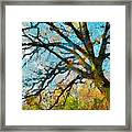 The Tree Of Many Colours  Framed Print