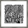 The Watering Hole.. Framed Print