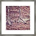 This Is Not A Bird Framed Print