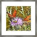 Thistlefly Framed Print