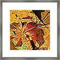 Tiger Lily Still Life  Framed Print