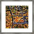 Time To Rake Framed Print by David Patterson