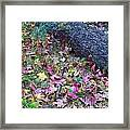 Tree And Leaves Framed Print