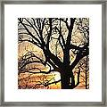 Tree Art Framed Print