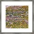Tree Bark Moss Framed Print
