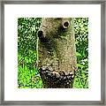 Tree Face Framed Print