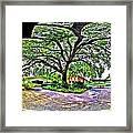 Tree In Church Yard - 4 Framed Print