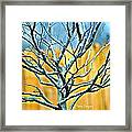 Tree In Winter Framed Print