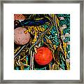Two And A Half Balls Framed Print