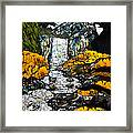 Vernal Falls Framed Print