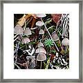 Very Tull Mushrooms Framed Print