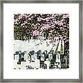 Veterans National Cemetery Framed Print