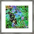 Violets Are Blue Framed Print