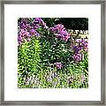Wall Front Framed Print