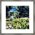 War Memorial Rose Garden 1  Framed Print