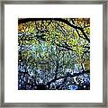 Water Cove Framed Print by Maria Scarfone