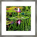 Water Lily Pond Garden Impressionistic Monet Style Framed Print