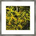Water Reflection Abstract Autumn 1 G Framed Print