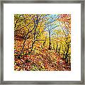 Way To The Chapel Framed Print