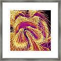 Weevil Leg, Sem Framed Print