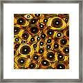 Whale Bone Tissue, Light Micrograph Framed Print by Dr Keith Wheeler