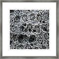 White Coral 1 Koh Kut Thailand Framed Print