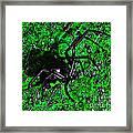 Wicked Widow - Green Framed Print