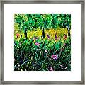 Wild Flowers 451190 Framed Print