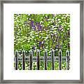 Wild Flowers On A Meadow Framed Print by Jorg Greuel