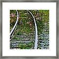 Wildflower Railroad Framed Print
