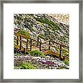 Wildflower Steps Framed Print