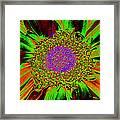 Wildflower Tutu Framed Print