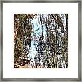 Willow Sailing Framed Print
