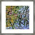 Willows At The Pond Framed Print