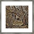 Window Of Roots Framed Print
