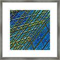 Windows And Reflections No.1058 Framed Print